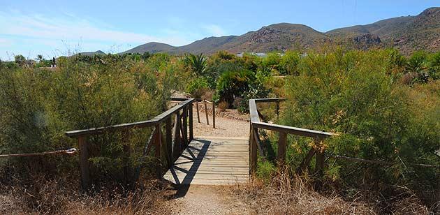 Jardin bot nico el albardinar en waste magazine for Jardin botanico almeria