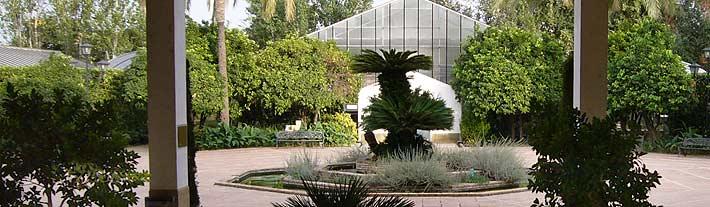 Jard n bot nico c rdoba en waste magazine for Jardin botanico en sevilla