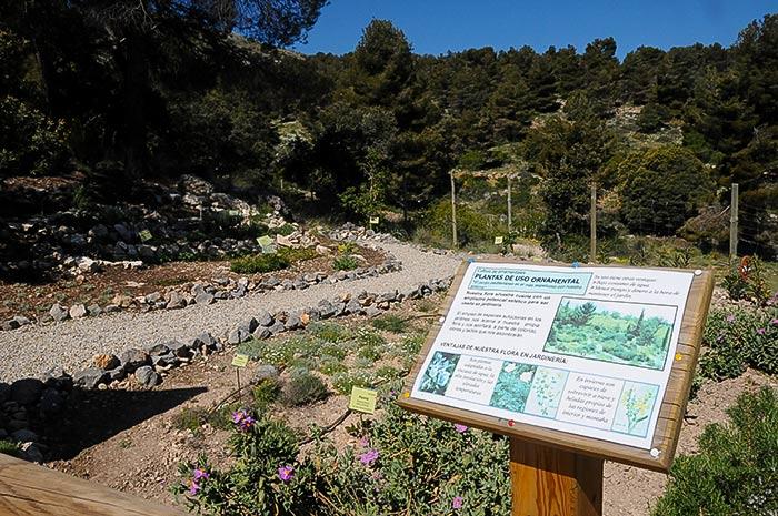 Jard n bot nico umbr a de la virgen parque natural de la for Jardin botanico almeria