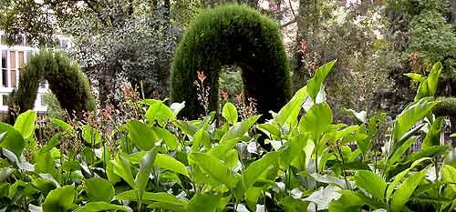 Jard n bot nico de granada en waste magazine for Jardin botanico medicinal